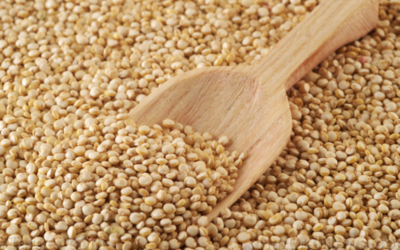 Follow these tips to ensure the proper long-term storage of grains