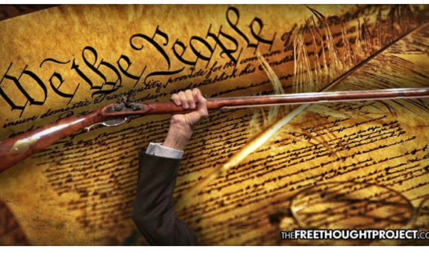 Over One Million Gun Owners Refuse to Obey Ban, No One Turning in Magazines