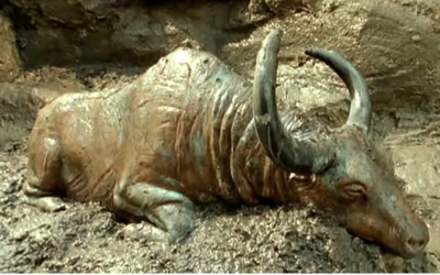 14 Most Amazing Permafrost Discoveries from Siberia [VIDEO]