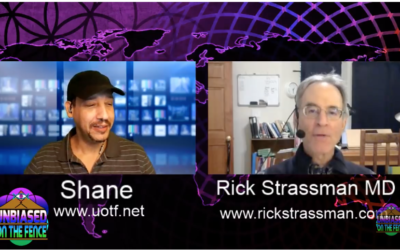 Dr. Rick Strassman – DMT Psychedelic Research [VIDEO]
