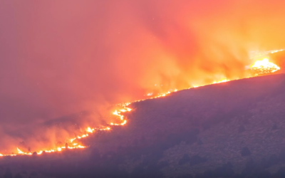 California WILDFIRE: David Wilcock Exposes the Scorching TRUTH, Exclusive Interview [Part 1/3] [VIDEO]