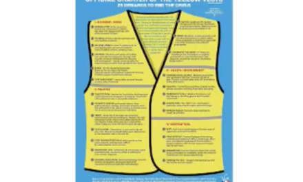 Offical Charter – 25 Demands of Yellow Vest Movement (English) [VIDEO]