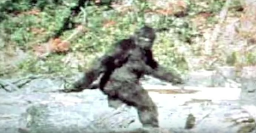 The Yowie. Australia's Bigfoot!? [VIDEO]