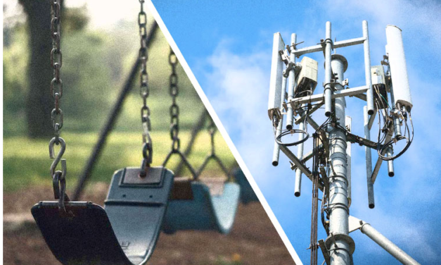 PROTEST GETS CELL TOWER NEAR PLAYGROUND REMOVED IN NEW YORK