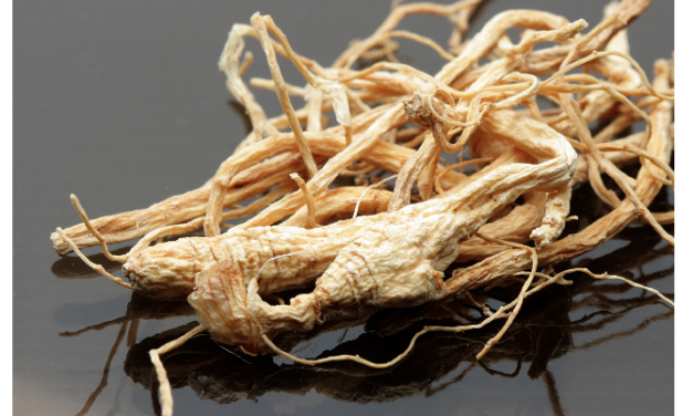 Stroke patients can strengthen their brain function with ginseng