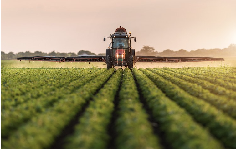 'DON'T ASK, DON'T TELL' – WHY THE 'PROBABLE CARCINOGEN' GLYPHOSATE IS SPRAYED ON YOUR FOOD CROPS RIGHT BEFORE HARVEST