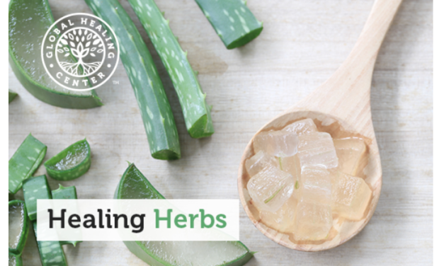 Healing Herbs: Embracing Nature's Medicine