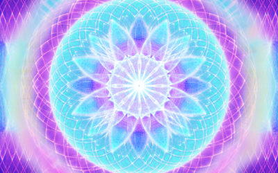 Lisa Renee – Alignment to Natural Law