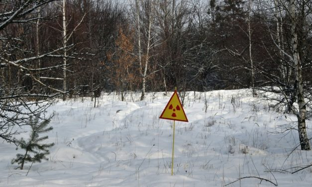 Large wildfire engulfs forest in Chernobyl's EXCLUSION ZONE