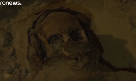 Egyptian archaeologists discover 50 unidentified mummies [VIDEO]