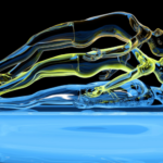 """Defense Intelligence Agency Comments On The Reality of """"Astral Projection"""""""