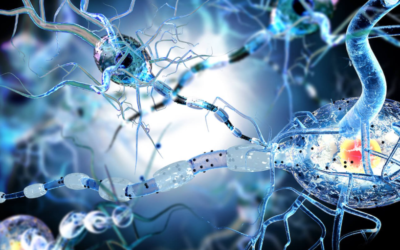 How To Activate Autophagy: Your Body's Self-Cleansing System