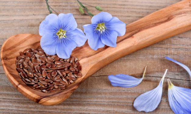 Flaxseed Beats HRT in Reducing Menopause Symptoms in Clinical Study