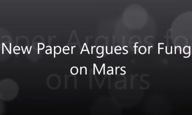 New Paper Argues for Fungi on Mars [VIDEO]