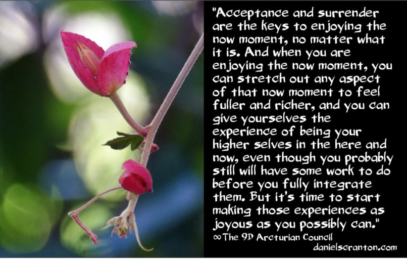 Enjoying Your Time Here ∞The 9D Arcturian Council