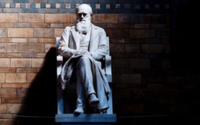 Why Darwinism Is Wrong, Dead Wrong – Part 1: Intelligent Design and Information