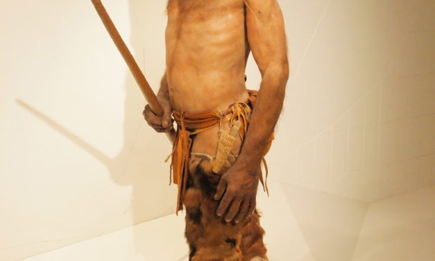 Mudfossil University – Otzi the Iceman used Carbon for Pain [VIDEO]