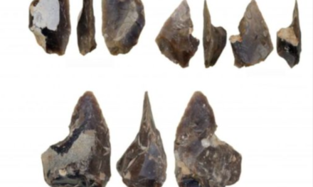 It's the Flintstones! Archaeologists find 60,000-year-old Neanderthal workshop with 17,000 flint objects