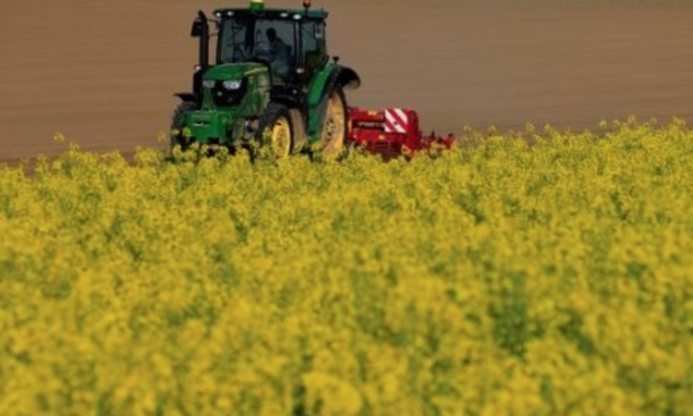 French, German Farmers Destroy GMO-contaminated Crops