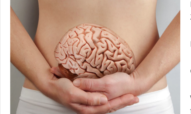 From Gut to Brain – The Inflammation-Depression Connection