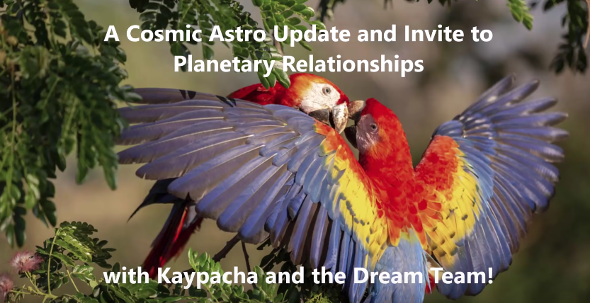 Cosmic Update and Invitation to Planetary Relationships! [VIDEO]