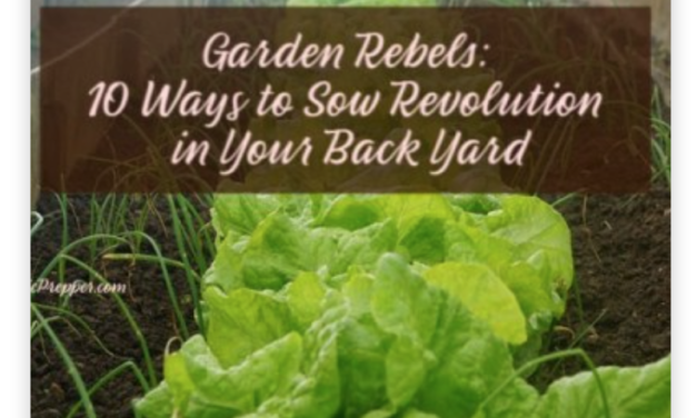 Garden Rebels: 10 Ways to Sow Revolution in Your Back Yard
