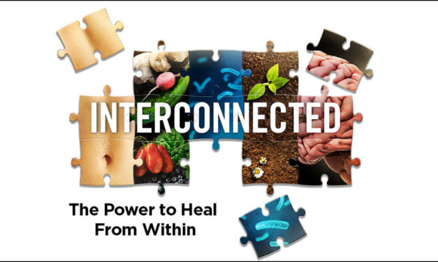 Docuseries: Interconnected Heal From Within!