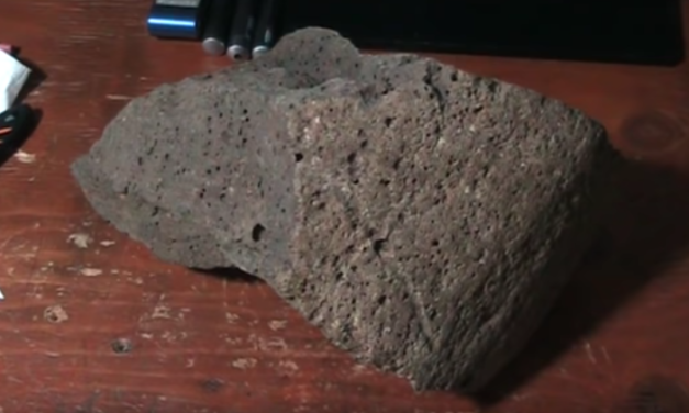 Mudfossil University – Ancient Bones Seen Turning to Oil [VIDEO]