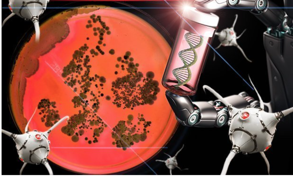 Scientists create DNA robots that eat and EVOLVE 'blurring line' between life and machine