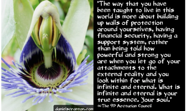 Your Growth & Evolution ∞The 9D Arcturian Council