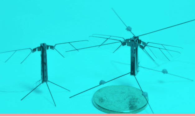 Tiny Spies: This Insect-Like Flying Robot is Smaller Than a Penny