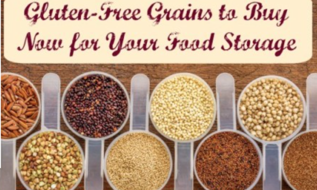 Gluten-Free Grains to Buy Now for Your Food Storage