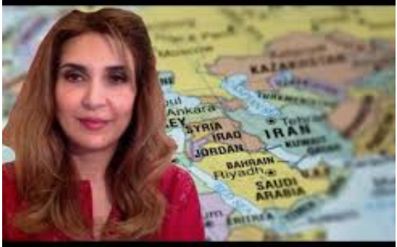 Surprising Truth from the MSM :Reporter Sharmine Narwani on the secret history of America's defeat in Syria