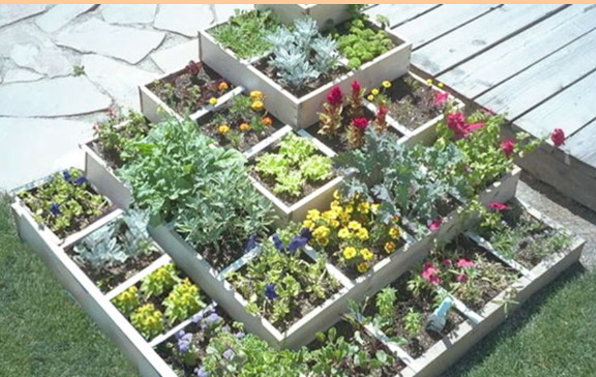 Square Foot Gardening: Easy Peasy Organic, GMO-Free Food On Balconies, Roof Tops, Raised Beds And Acreage