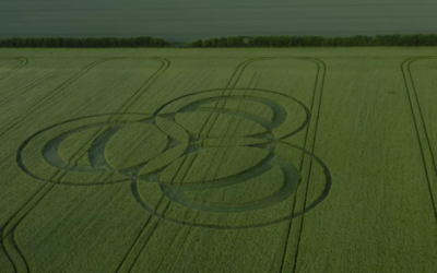 Long Wood CROP CIRCLE 3.6.2019 [VIDEO]