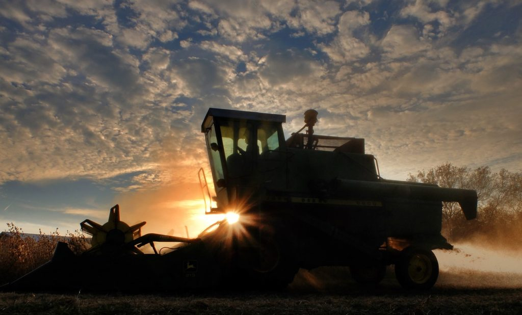 China Puts U.S. Soybean Farmers On Alert, Bans Import Of U.S. Grown Soybeans