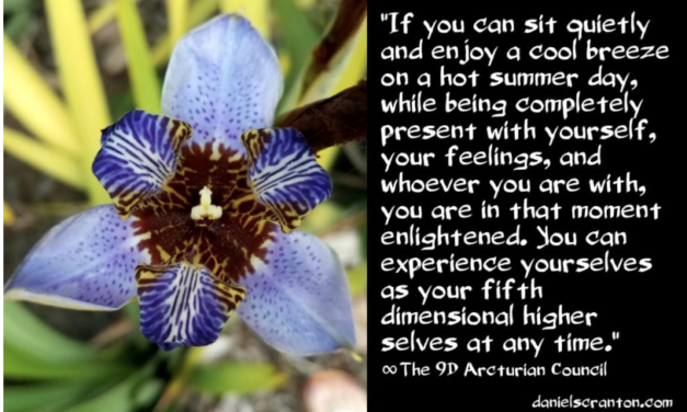 How You Become Your Higher Self ∞The 9D Arcturian Council