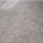 Mysterious Nasca lines in Peru depict exotic birds not local ones