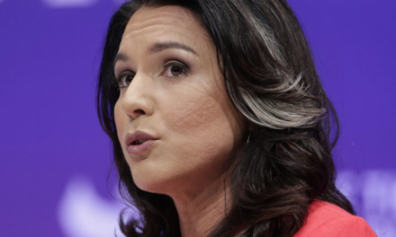Tulsi Gabbard Cleaned up the first Democrat Debate [w/VIDEO]