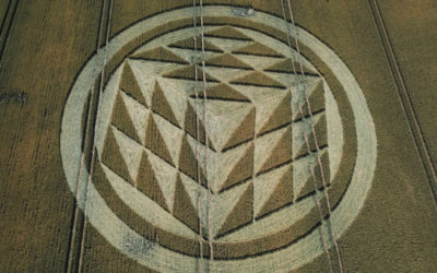 Crop Circle – Rodfield Lane, Nr Tichborne, Hampshire