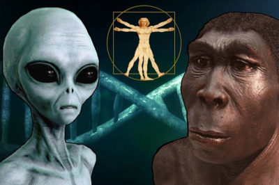DNA, Apes & the Demiurge: Did Something Interfere With Our Genetic Structure?