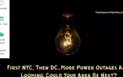 First NYC, Then DC…More Power Outages Are Looming: Could Your Area Be Next?