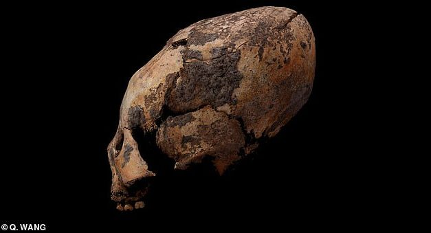 Oldest alien-shaped skulls discovered in China