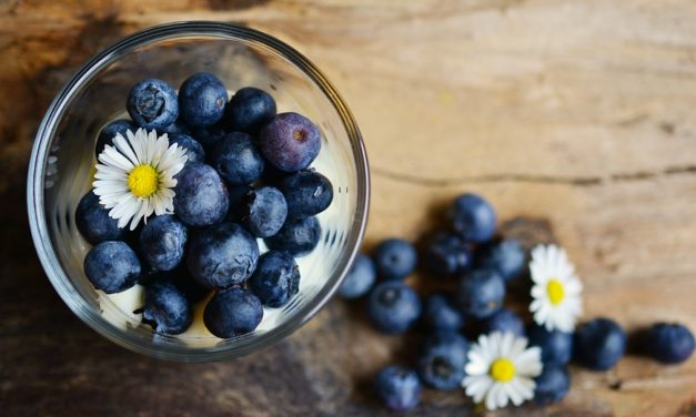 Diverse Health Benefits Of Including Blueberries In Your Diet