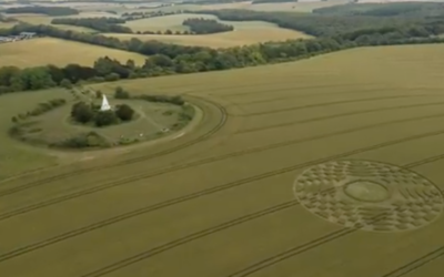 Crop Circle – Farley Mount – Hampshire – Reported 8th July 2019 [VIDEO]