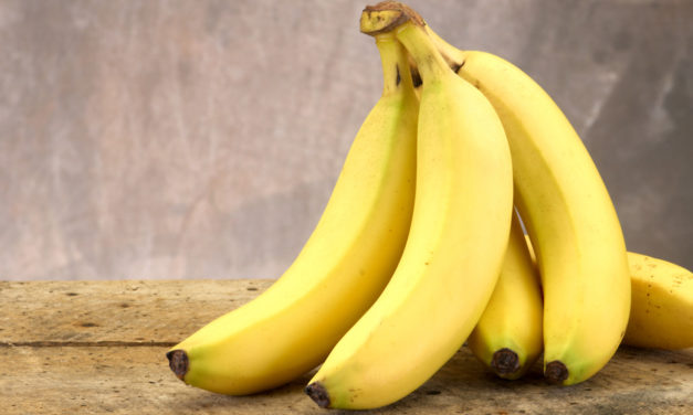 Bad News: A Banana-Killing Fungus Has Likely Reached the Americas