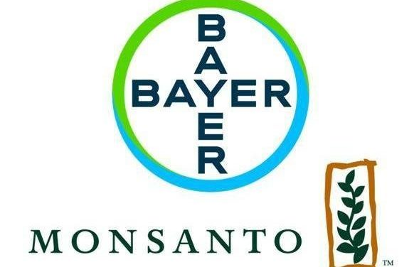 Monsanto Owner Bayer to Potentially Become Involved with Vegan Meat Production
