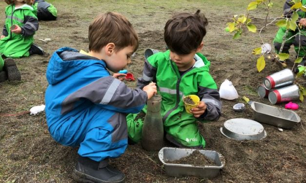 Learning In Nature: The Benefits Of Forest School