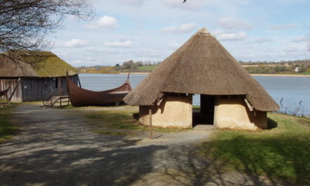 The Vikings saved Ireland from a steep 10th century population decline, researchers say