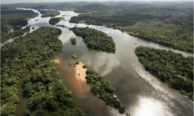 Myth of pristine Amazon rainforest busted as old cities reappear